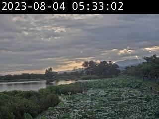瓢湖ライブカメラ02